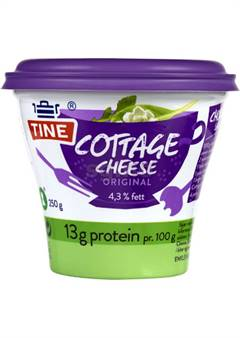 Cottage Cheese Original 250 gr